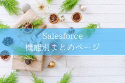 Salesforce function summary page