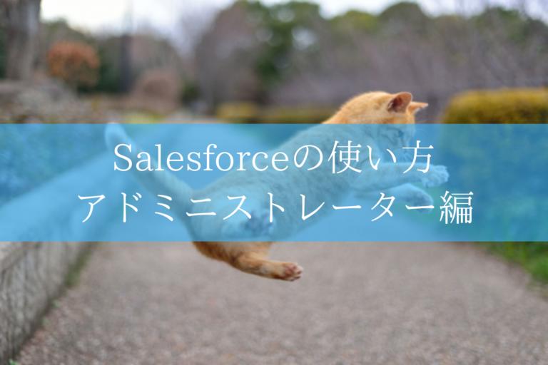 Salesforceの使い方
