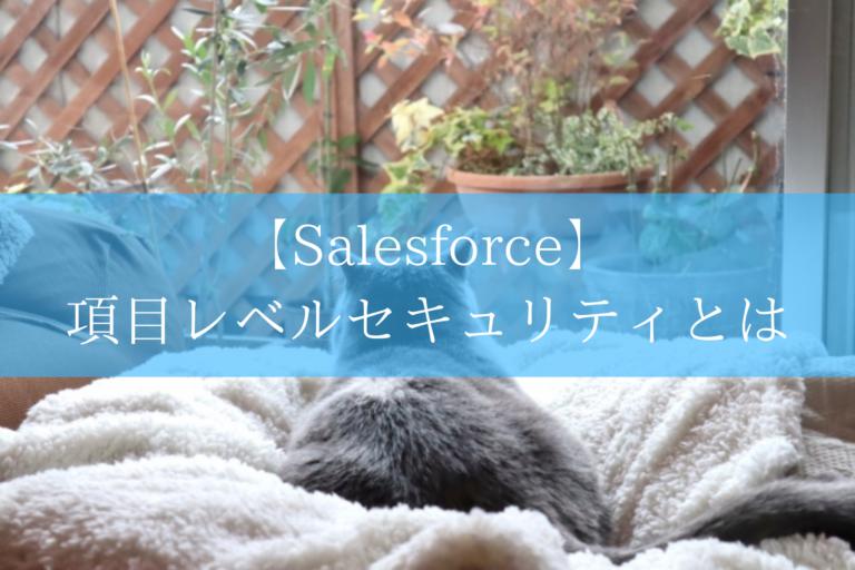 Salesforceの項目レベルセキュリティ