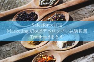 Salesforce Marketing Cloudデベロッパー 試験対策想定問題集