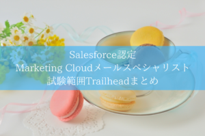 Salesforce認定 Marketing Cloudメールスペシャリスト試験範囲Trailheadまとめ