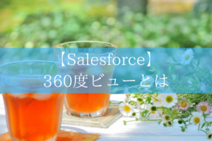 Salesforceの360度ビュー