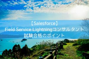 Field Service Lightningコンサルタント 試験合格のポイント