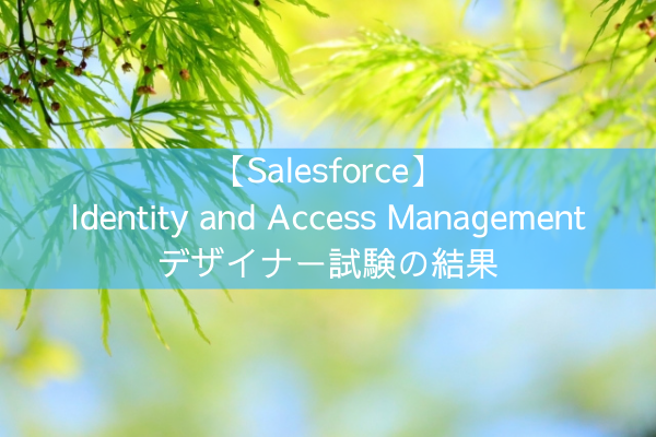 【Salesforce】Identity and Access Management デザイナー試験の結果